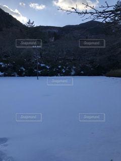 雪,屋外,白,雪原
