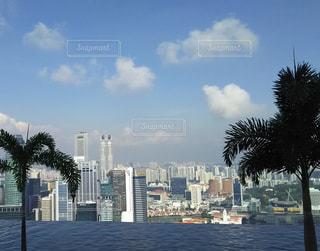 雲,プール,晴れ,晴天,水,景色,高層ビル,シンガポール,屋上,ヤシの木,ホテル,ビル群,マリーナベイサンズホテル