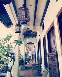 緑,椅子,美しい,電気,植木鉢,木製,シンガポール,ドア,鳥かご,観葉植物,グリーン,家族旅行,鳥籠,彫り,エメラルドヒル