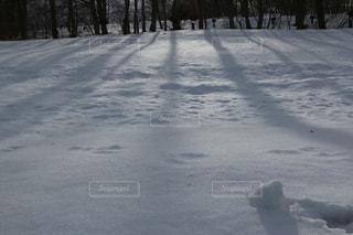 雪景色の写真・画像素材[1673570]
