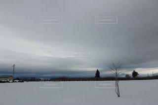 雪景色の畑の写真・画像素材[1675854]