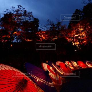 空に花火のグループの写真・画像素材[1680957]