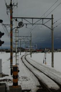 雪に覆われた信号の写真・画像素材[1744483]