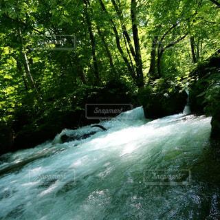 メイフィールド滝の上に波に乗っている男の写真・画像素材[3145545]