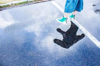 雨わたり。の写真・画像素材[2227353]