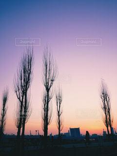 沈む夕日の写真・画像素材[1684853]