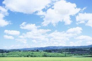 背景に木々のある大きな緑のフィールドの写真・画像素材[4805818]