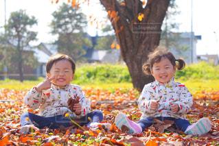 落ち葉で遊ぶよ!の写真・画像素材[1705396]