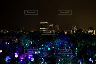 夜のライトアップされた街の写真・画像素材[1680370]