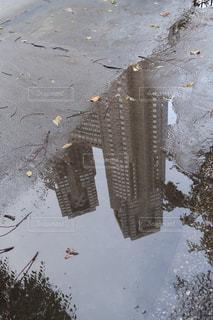 雨,屋外,水たまり,水面,反射,鏡,しずく,くもり