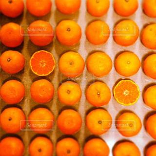 オレンジ,果物,日本,みかん,フレッシュ,柑橘類,複数,配置