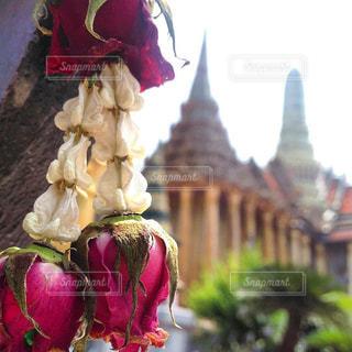 タイ,女子旅,海外旅行,バンコク,寺院巡り