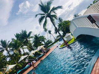 風景,海,空,海外,ビーチ,雲,プール,晴れ,青空,ベンチ,旅行,タイ,リゾート