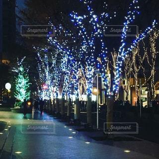 夜のライトアップされた街の写真・画像素材[1686715]