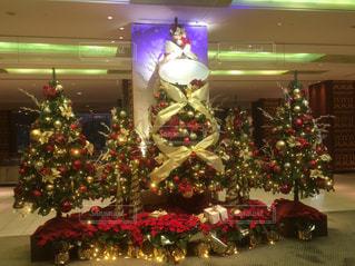 部屋のクリスマス ツリーの写真・画像素材[1689173]