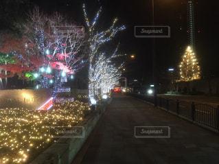 夜の街の景色の写真・画像素材[1689229]
