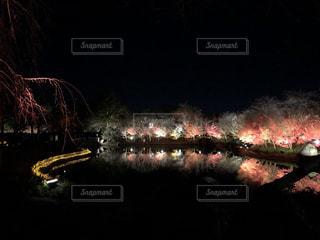 空に花火の写真・画像素材[1690165]