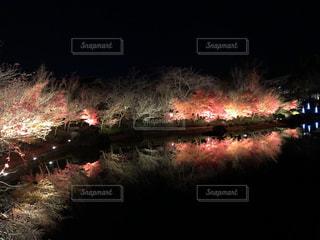 夜、トラックの鉄道の写真・画像素材[1690179]