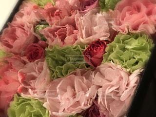 花のクローズアップの写真・画像素材[2123387]