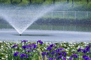 噴水の写真・画像素材[2159533]