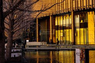 建物,屋外,大阪,水面,反射,樹木,イルミネーション,都会,明るい,通り,グランフロント大阪,シャンパンゴールドイルミネーション,シャンパンイルミネーション