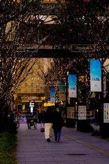 女性,友だち,建物,夜,屋外,大阪,樹木,イルミネーション,都会,道,明るい,グランフロント,グランフロント大阪,シャンパンゴールドイルミネーション