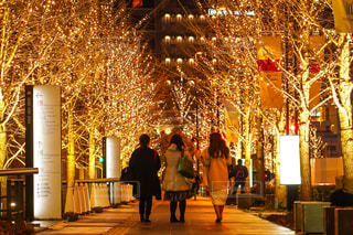 女性,友だち,3人,風景,イルミネーション,都会,道,人,買い物,明るい,飲み会,女子会,同僚,履物,グランフロント大阪,シャンパンゴールド