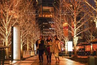 女性,3人,風景,屋外,樹木,イルミネーション,都会,人物,道,人,歩道,明るい,通り,お出かけ,グランフロント大阪,シャンパンゴールド