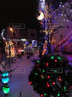 民家のイルミネーションも雪があるから映える。の写真・画像素材[1733076]