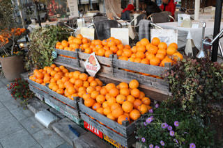 オレンジ色は平和の象徴の写真・画像素材[1767273]