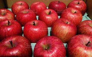 私は真っ赤なりんごです〜♬ 青森りんごは美味しいよ〜♬の写真・画像素材[1769397]