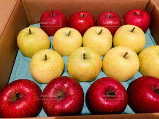 赤はサンふじ、黄色は王林。青森りんご♡の写真・画像素材[1770173]