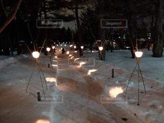 中島公園の夜の雪景色の写真・画像素材[1774932]