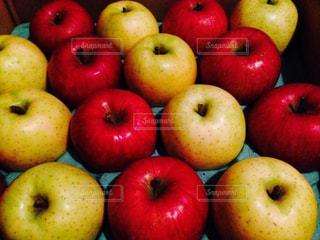 フルーツ,りんご,林檎,リンゴ,王林,サンふじ
