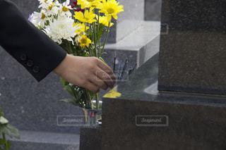 花,黄色,手,線香,お参り,菊,墓石,喪服