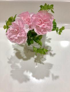 花とシルエットの写真・画像素材[1964096]