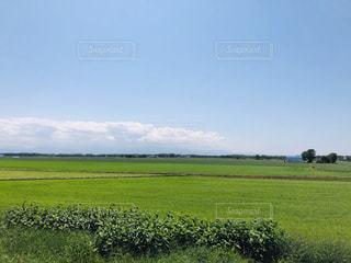 風景,空,屋外,緑,晴れ,青空,北海道,地平線,畑,お散歩,日中,農村
