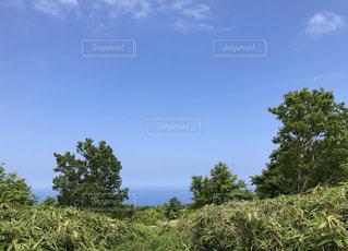 青空,お散歩,小樽市,晴れた日
