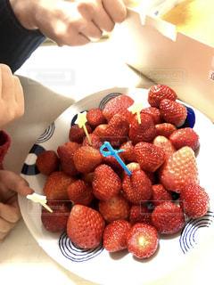 家族,食べ物,屋内,赤,いちご,苺,果物,新鮮,フレッシュ,イチゴ