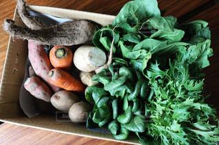 オーガニック野菜の写真・画像素材[1037301]