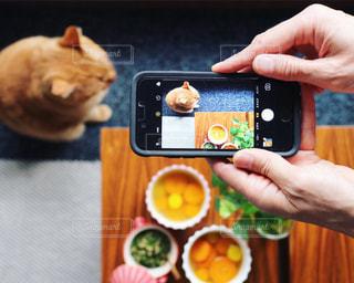 朝のスープと猫の写真・画像素材[1421507]