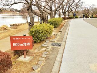 ジョギングコース500m 地点の写真・画像素材[1813443]