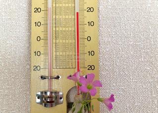 日常,壁,生活,梅雨,湿気,ジメジメ,温度計,雨の日,梅雨入り,湿度,花のある暮らし,湿度計,乾湿差