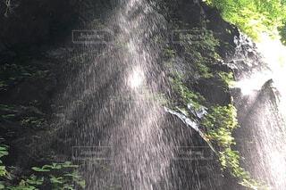 光と影の写真・画像素材[4424963]
