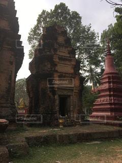 屋外,草,古い,樹木,旅行,遺跡,昼,東南アジア,石,カンボジア,海外旅行
