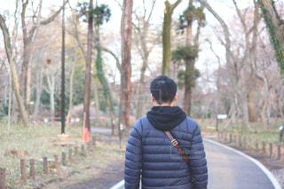 冬のお散歩の写真・画像素材[1785569]