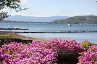 湖の彩りの写真・画像素材[2031239]