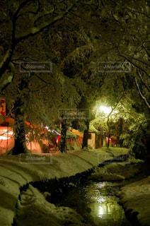 雪の日の神社の写真・画像素材[1732482]