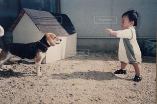 赤ちゃんと子犬の写真・画像素材[2062516]