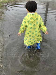 自然,雨,水たまり,子供,人物,人,幼児,梅雨,天気,雨の日
